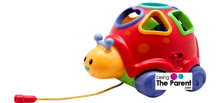 Pull Along Toys