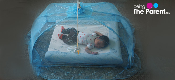 baby in a mosquito net