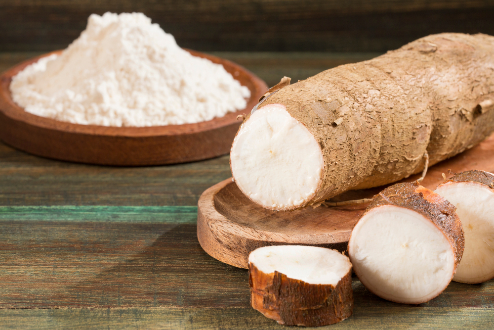 Cassava Roots During Pregnancy