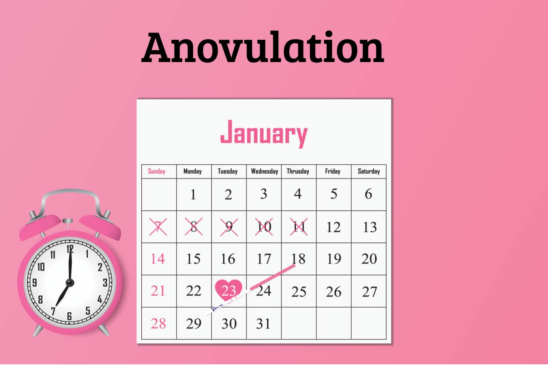 Anovulation- Causes, Symptoms, & Remedies