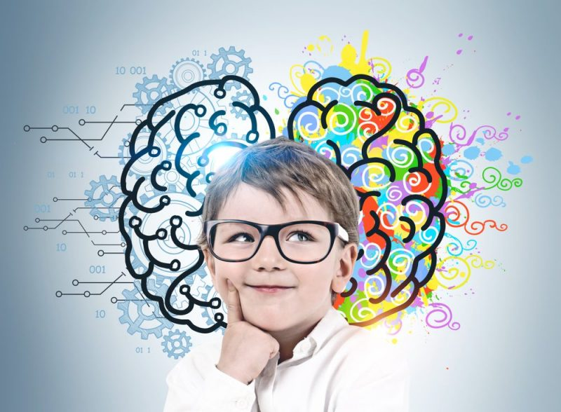 How Right is the Right Brain Education for Kids?