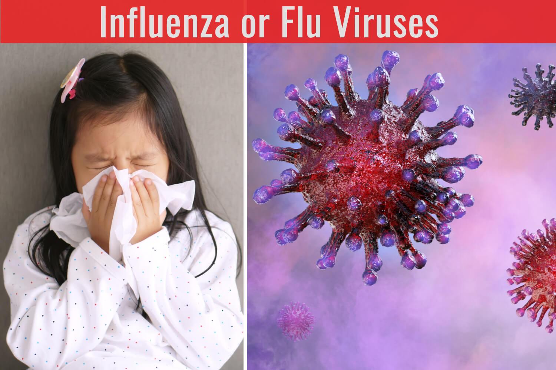 influenza or flu virus , girl having cold
