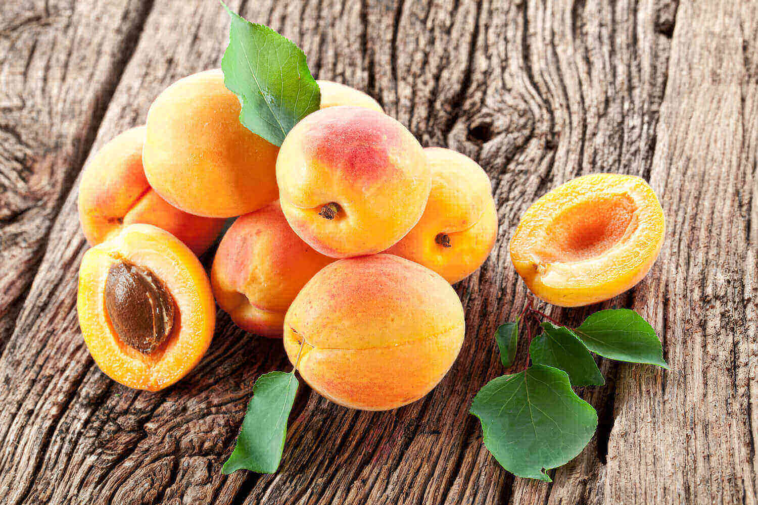 bunch of Ripe apricots