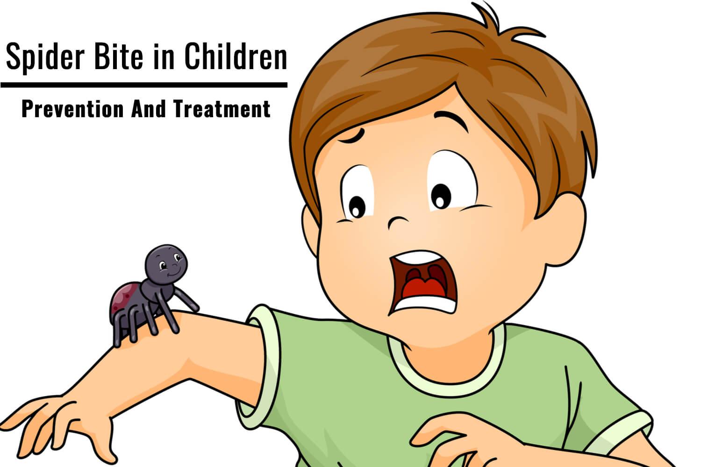 spider bite in children -Prevention And Treatment
